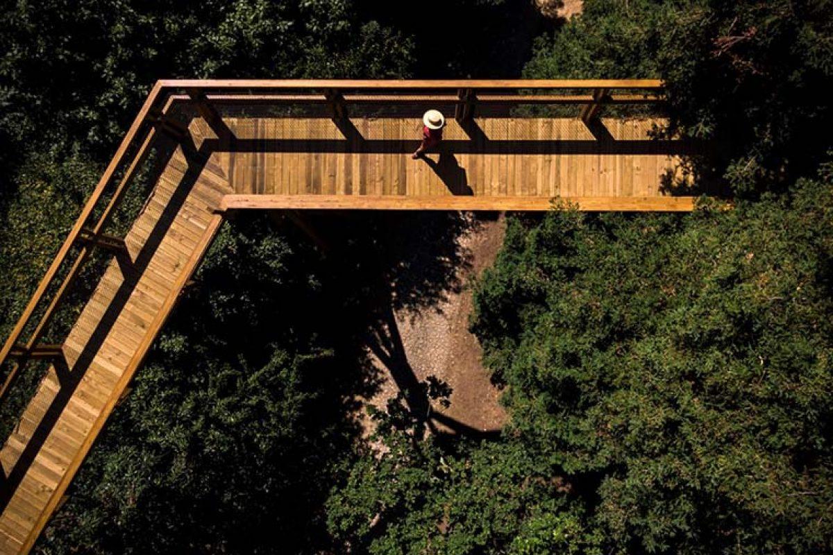 Carlos Castanheira diseña un paseo por las copas de los árboles de Oporto