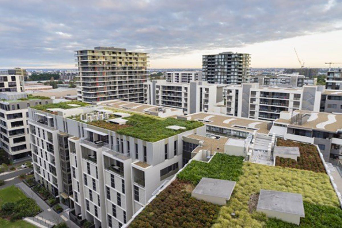 Proyecto Terrats Verds, espacios verdes en las azoteas para crear beneficios medioambientales en la ciudad
