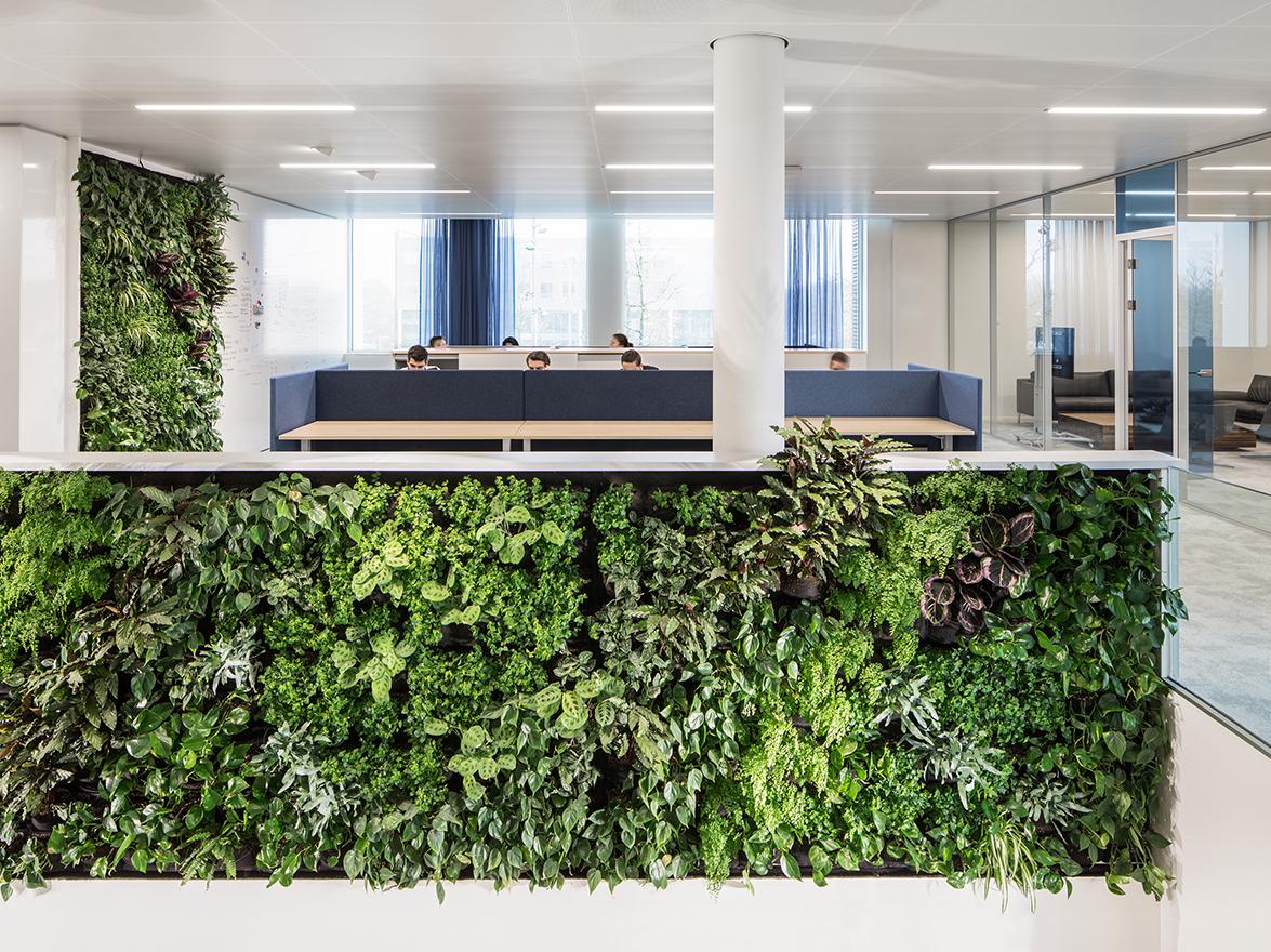 i29 interior architects diseña unas oficinas abiertas y verdes ...